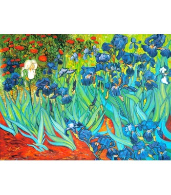 Irises from Van Gogh  1889 (600mm x 800mm)